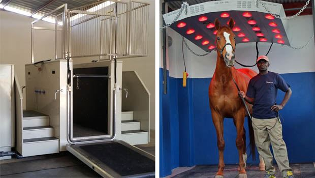 Equine Hydrotherapy Spa and Solarium at Manor D'or